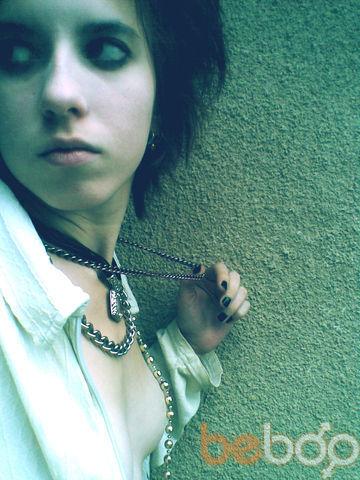 ���� ������� Allory, ���������, ������, 24