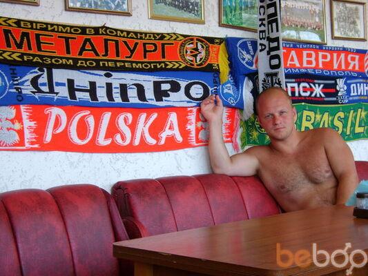 ���� ������� lyashenko, ��������������, �������, 34