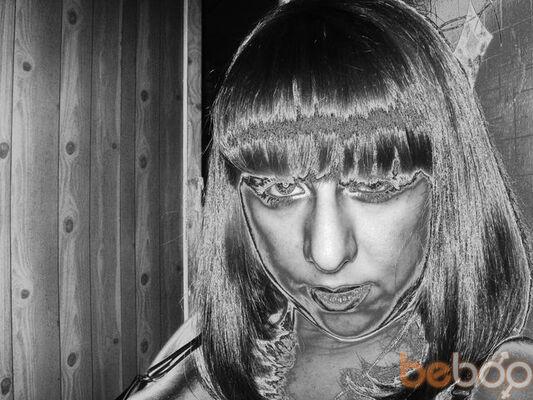 ���� ������� feeria, ����������, �������, 32