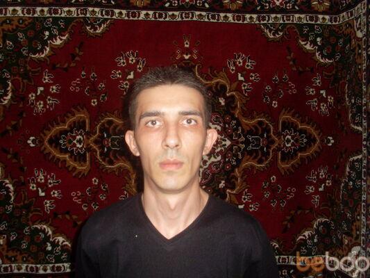 ���� ������� elman, �������, �������, 37