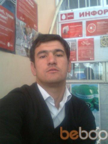 ���� ������� sunnatuz, �������, ����������, 32