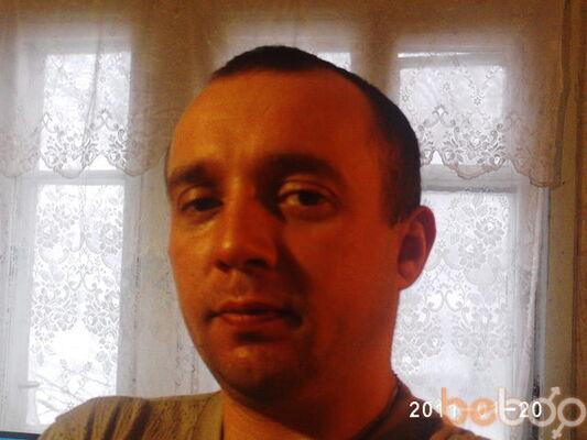 ���� ������� gosul, ����, �������, 39