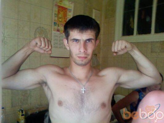 ���� ������� yonaz, �������, �������, 31